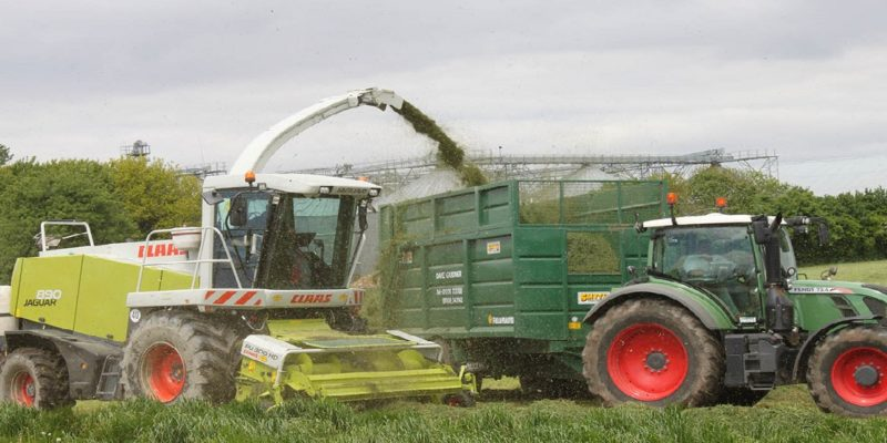 duffields silage additives